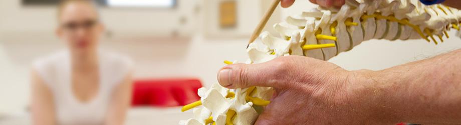 Die DAGC informiert rund um Amerikanische Chiropraktik