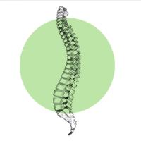 Logo von DAGC-Chiropraktikerin Jenny Kim Geyer